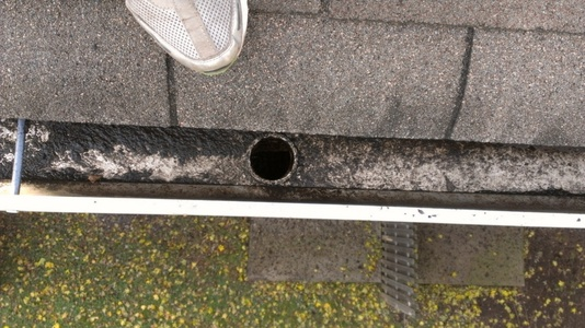 Gutters Cleaning & Repair Iselin NJ